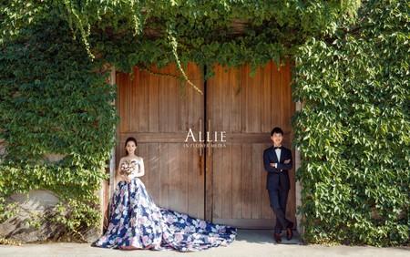 Allie (新人分享)