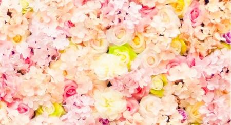 20號硬式背板套餐❤Rose Rose粉綠白款