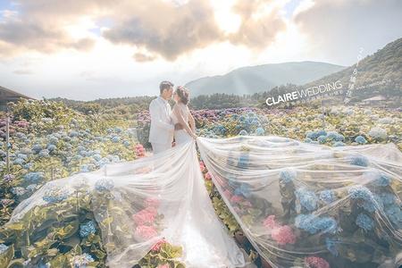 超美的季節限定~ 陽明山繡球花婚紗照 攝影:游頭