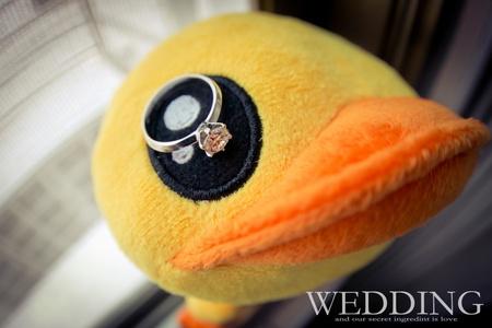 【儀式宴客】- 快來看!黃色小鴨