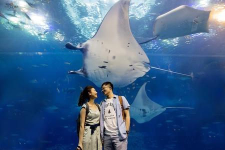 『2015 海外婚紗』沖繩