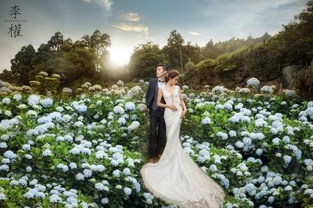 『婚紗包套』一年一度繡球花季